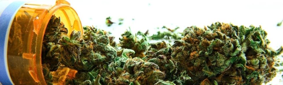 marijuana ptsd