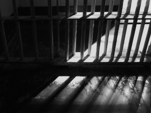 prison voting