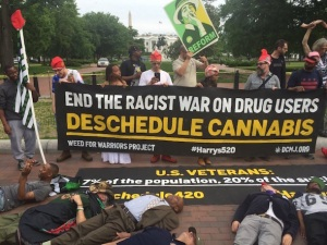 veterans marijuana